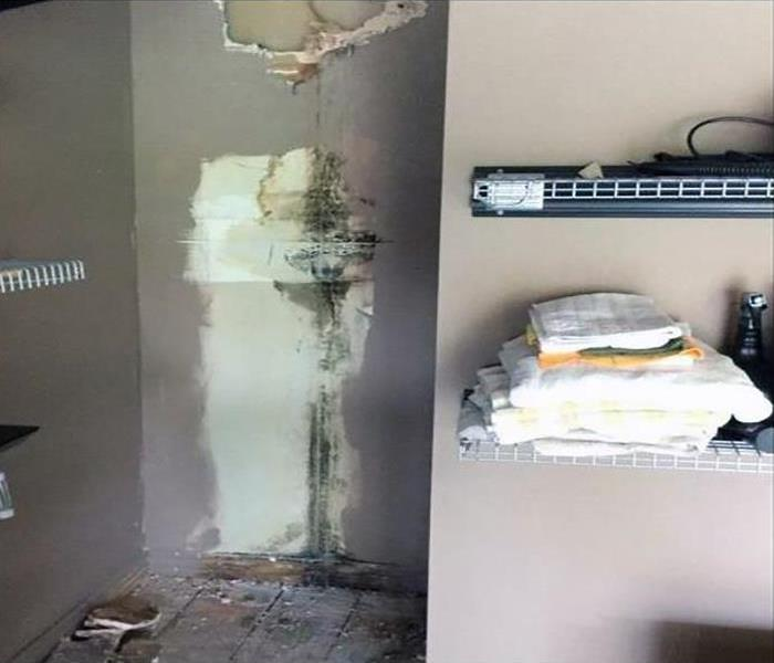 Mold Damage Remediation In Johnson Before