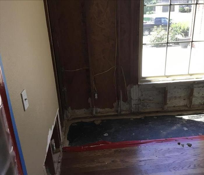 Mold In Apartment: Unexpected Mold Damage In Springdale Apartments