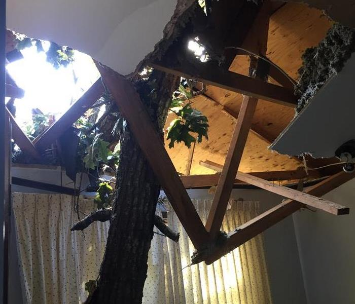 Tree through a customer's roof after a Tornado