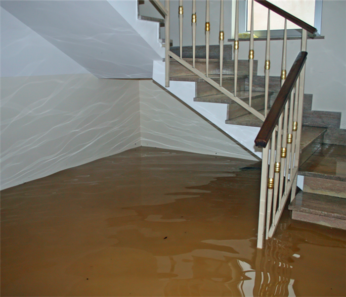 Water Damage Must Have Resources for Water Damage Remediation in Springdale