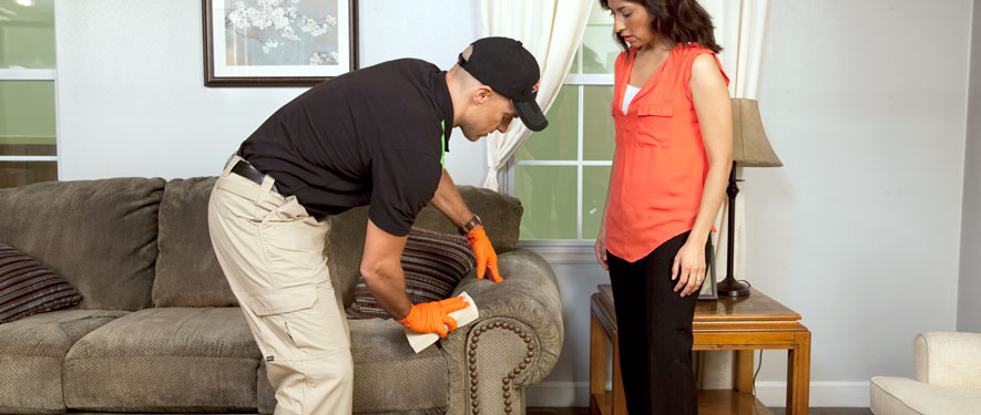Fayetteville, AR carpet upholstery cleaning